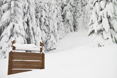 Fir trees with snow and a sign on left, horizontal Stock Photography