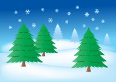 Fir trees in the snow. Vector Illustration of Fir trees in the snow Stock Photo
