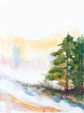 Fir trees and snow. Winter background with fir trees and snow. hand painted watercolor illustration Royalty Free Stock Photos