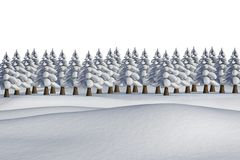 Fir trees on snowy landscape. On white background Royalty Free Stock Image