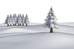 Fir trees on snowy landscape. On white background Royalty Free Stock Images