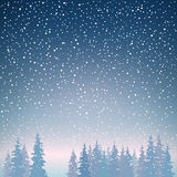 Fir Trees in Winter in Snowfall Royalty Free Stock Photography