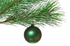 Fir-twig with christmas ball Stock Photos
