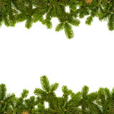 Fir twig frame Royalty Free Stock Photo