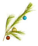 Fir Twig with Three Balls Stock Photography