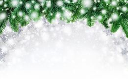 Fir twigs and snow background Stock Images