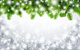 Fir twigs and snow background Royalty Free Stock Photography