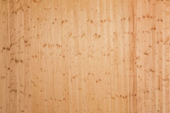 Fir wood board Stock Photography