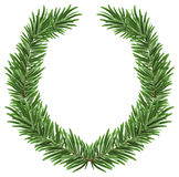 Fir wreath. Green lush spruce branch. Fir branches. Isolated illustration in vector format Stock Photos