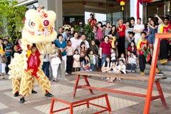fira det kinesiska malaysia nya året Arkivbilder