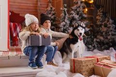 Fira jul med deras hemmastadda hund barnlek med hunden med den dekorerade julgranen i bakgrunden Royaltyfria Bilder