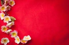Fira kinesisk bakgrund för det nya året med den härliga blomningen fr royaltyfri fotografi