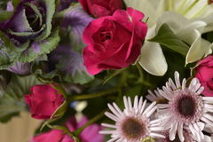 fira livstid Royaltyfria Bilder