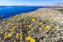 Fira Santorini Стоковые Изображения
