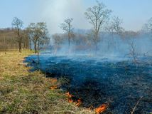 Fire 1. A fire on woodside. Sunny day, spring. Russian Far East, Primorye Royalty Free Stock Photography