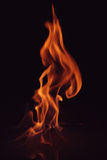 Fire 1.jpg. Walking fire Royalty Free Stock Photo