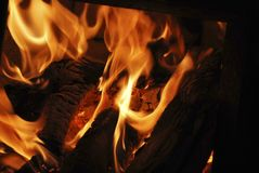 Fire. The tongues of the flame in the stove Royalty Free Stock Photos