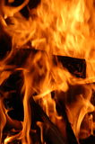 Fire. A raging inferno Royalty Free Stock Photos