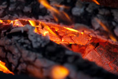 Fire Royalty Free Stock Images