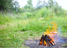 Fire. Is burning in nature, a hot summer day Royalty Free Stock Image