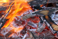 Fire. This is a close up shot of fire under my grill like nice background Royalty Free Stock Images