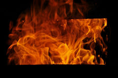 Fire. Burning bright red-orange flame Stock Images