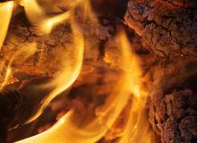 Fire. Languages of the flame from campfires Royalty Free Stock Photography