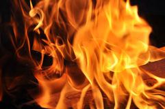 Fire. Picture of logs in flame of fire which burn Stock Photography