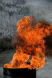 Fire. And flames, in red, orange and yellow Stock Photography