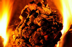 Fire. Close-up fire in fireplace - wood royalty free stock image