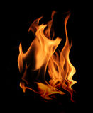 Fire. Isolated fire flame on black background with reflection Stock Photography
