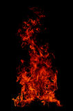 Fire. Flames in black background Royalty Free Stock Photo