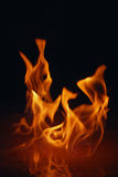 Fire 2.jpg. Red based fire Royalty Free Stock Image