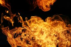 Fire. Flames on black background Stock Images