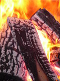 Fire. Burning fire wood in burningplace stock image