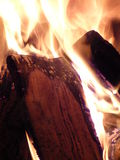 Fire. Burning fire wood in burningplace royalty free stock photo