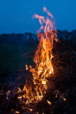 Fire. On a open field Royalty Free Stock Photo