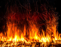 Fire. Photo on a black background Stock Photos