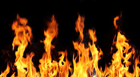 Fire. Flames  on a black background Royalty Free Stock Images