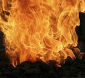 Fire. Flames close up Royalty Free Stock Photos