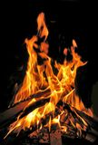 Fire. On a black background royalty free stock photo