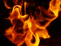 Fire. Flame Royalty Free Stock Photography