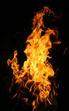 Fire. The close-up of yellow fire and dark as a background Royalty Free Stock Photography