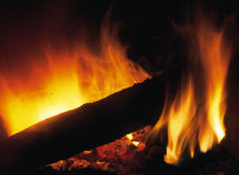 Fire. With a log Royalty Free Stock Images