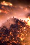 Fire. Big bon fire in the night Royalty Free Stock Photos