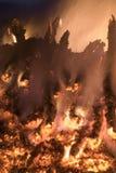 Fire. Big bon fire in the night Stock Image