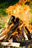 Fire. Close-up of a camp fire with burning wood detail Stock Images