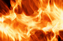 Fire. Orange fire flame close up Stock Image
