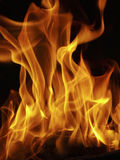 Fire. It is a hot fire Royalty Free Stock Photos