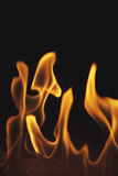Fire 7.jpg. Flames in the dark Stock Image